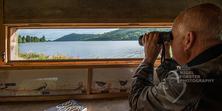 Birdwatching at Talybont. Image for Brecon Beacons National Park Authority